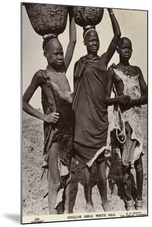 Shulluk Girls, White Nile--Mounted Photographic Print