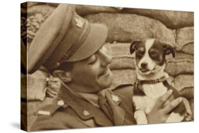 Canadian Soldier with a Dog 'Captured' at Courcelette, Somme, France, World War I--Stretched Canvas Print