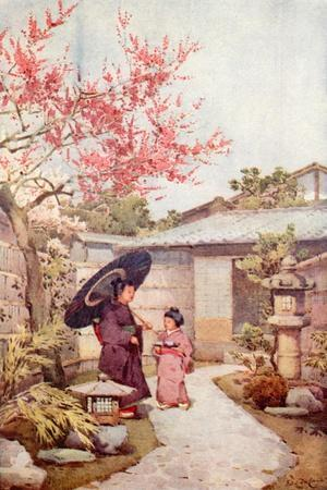The Kobai Plum Blossom-Ella Du Cane-Stretched Canvas Print