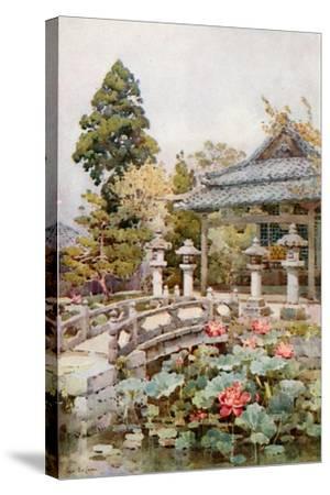 Lotus at Kyomidzu-Ella Du Cane-Stretched Canvas Print