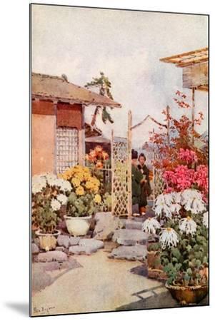 Chrysanthemums, Kyoto-Ella Du Cane-Mounted Giclee Print