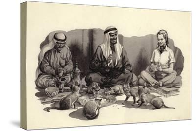An Arab Man Feeds His Cats-Pat Nicolle-Stretched Canvas Print