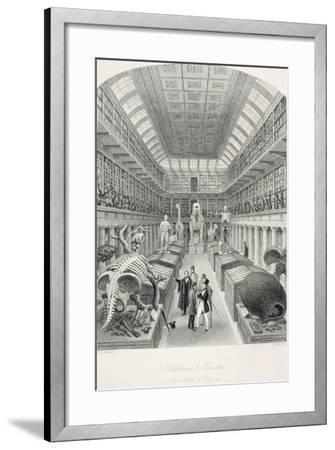 Hunterian Museum-Thomas Hosmer Shepherd-Framed Giclee Print