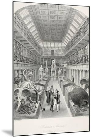 Hunterian Museum-Thomas Hosmer Shepherd-Mounted Giclee Print