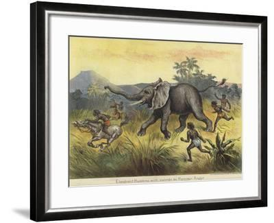 Elephant Hunting with Swords by Hamran Arabs--Framed Giclee Print
