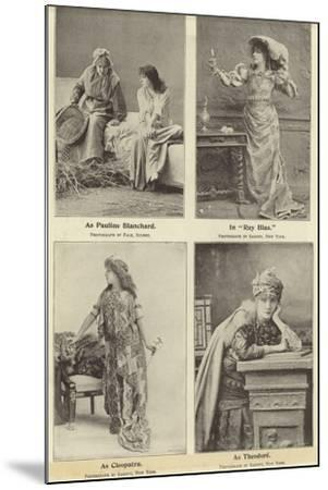 Madame Sara Bernhardt in Some of Her Characters--Mounted Photographic Print