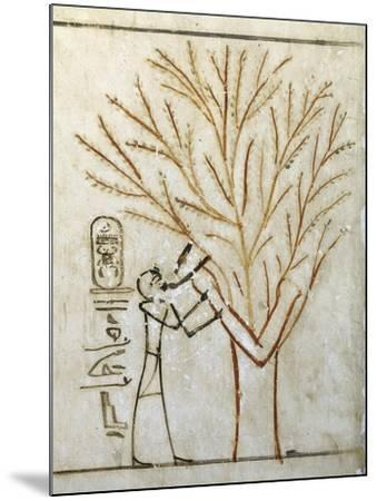 Egypt, Tomb of Thutmose III, Mural Painting of Pharaoh Drinking at Isis in Guise of Tree--Mounted Giclee Print