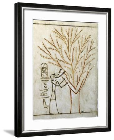 Egypt, Tomb of Thutmose III, Mural Painting of Pharaoh Drinking at Isis in Guise of Tree--Framed Giclee Print