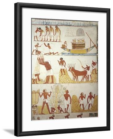 Egypt, Tomb of Royal Estate Supervisor Menna, Vestibule, Mural Paintings, Working in Fields--Framed Giclee Print