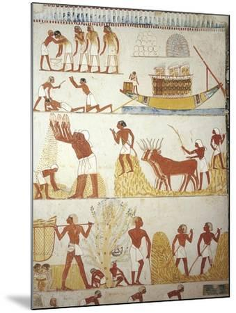 Egypt, Tomb of Royal Estate Supervisor Menna, Vestibule, Mural Paintings, Working in Fields--Mounted Giclee Print