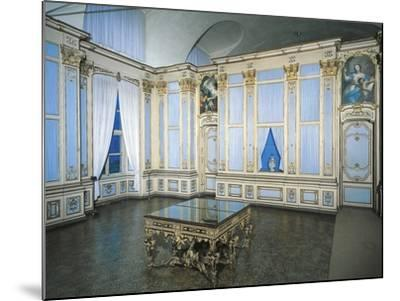 Library, Stupinigi's Little Hunting Palace--Mounted Photographic Print