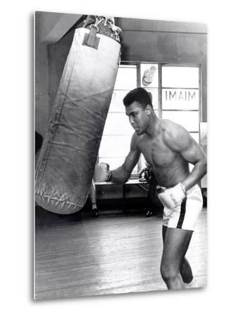 Muhammad Ali Training at the 5th Street Gym, Miami Beach, 27 September 1965--Metal Print