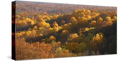 Autumn vista in Brown County State Park, Indiana, USA-Anna Miller-Stretched Canvas Print