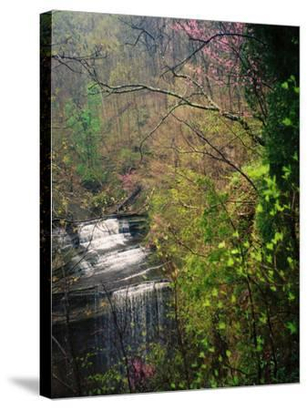 Spring in Clifty Creek State Park, Indiana, USA-Anna Miller-Stretched Canvas Print