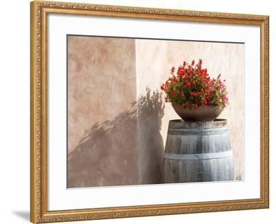 Europe, Italy, Tuscany. Flower Pot on Old Wine Barrel at Winery-Julie Eggers-Framed Photographic Print