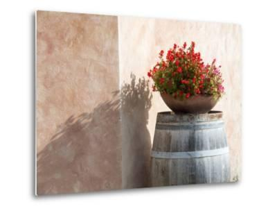Europe, Italy, Tuscany. Flower Pot on Old Wine Barrel at Winery-Julie Eggers-Metal Print