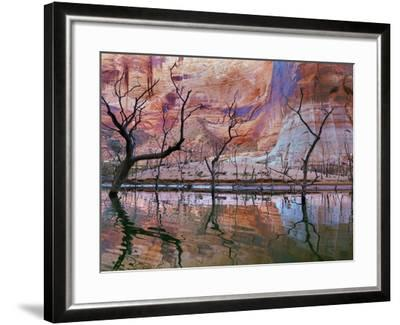 USA, Utah, Glen Canyon Nra. Drought Reveals Dead Trees-Jaynes Gallery-Framed Photographic Print