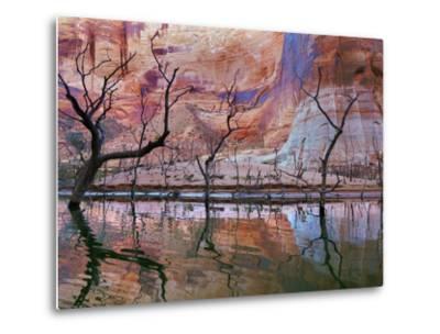 USA, Utah, Glen Canyon Nra. Drought Reveals Dead Trees-Jaynes Gallery-Metal Print