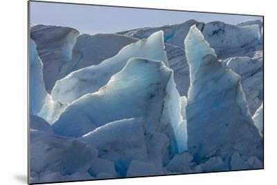 Glacier Grey. Torres Del Paine NP. Chile. UNESCO Biosphere-Tom Norring-Mounted Photographic Print