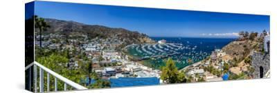 A Panorama of Avalon on Catalina Island-Andrew Shoemaker-Stretched Canvas Print