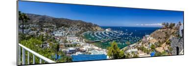 A Panorama of Avalon on Catalina Island-Andrew Shoemaker-Mounted Photographic Print