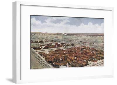 Chicago Stock Yards--Framed Giclee Print