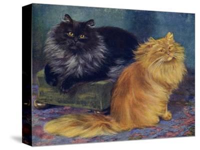 Smoke, Orange Persians-W^ Luker-Stretched Canvas Print