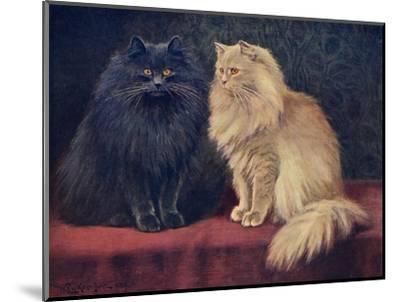 Blue, Cream Persian Cats-W^ Luker-Mounted Giclee Print