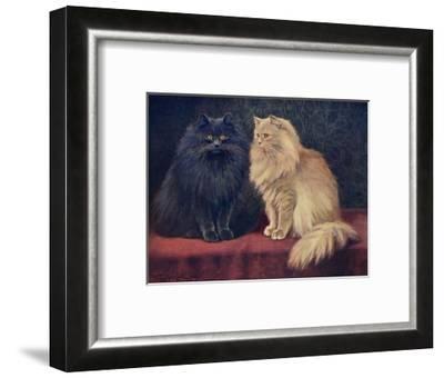 Blue, Cream Persian Cats-W^ Luker-Framed Giclee Print