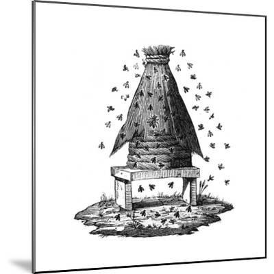 Beehive and Bees--Mounted Giclee Print