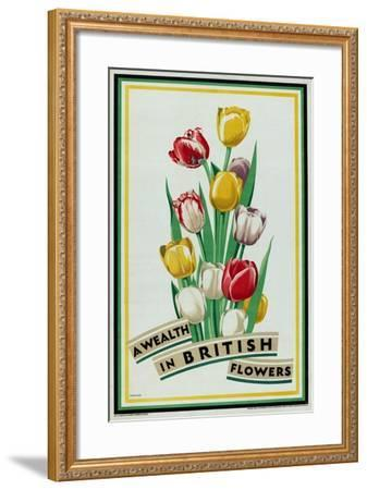 A Wealth in British Flowers, from the Series 'British Bulbs for Home Gardens'- Fawkes-Framed Giclee Print