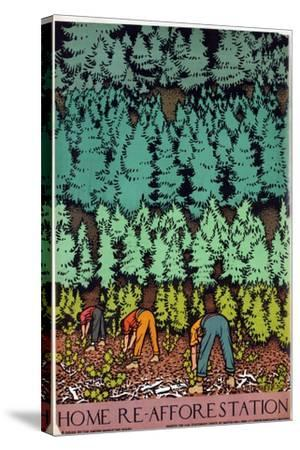 Home Afforestation-Keith Henderson-Stretched Canvas Print
