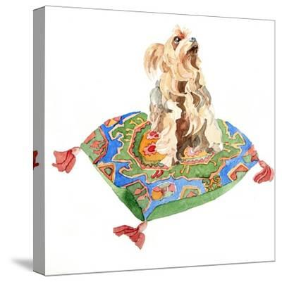 Yorkshire Terrier, 2012-Jennifer Abbott-Stretched Canvas Print