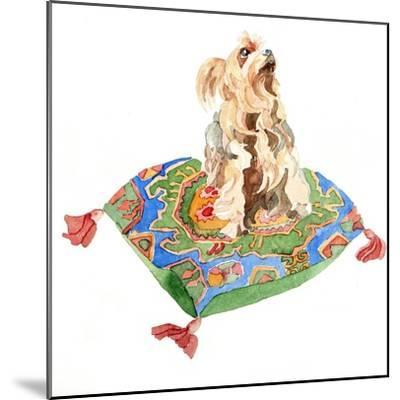 Yorkshire Terrier, 2012-Jennifer Abbott-Mounted Giclee Print