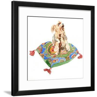 Yorkshire Terrier, 2012-Jennifer Abbott-Framed Giclee Print