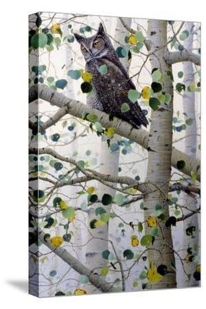 Misty Aspen-Jeff Tift-Stretched Canvas Print