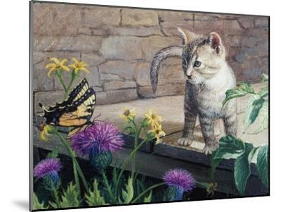 Kitten and Butterfly-Kevin Dodds-Mounted Giclee Print