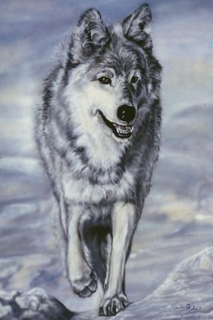 Lord of the Winterland-Jenny Newland-Stretched Canvas Print