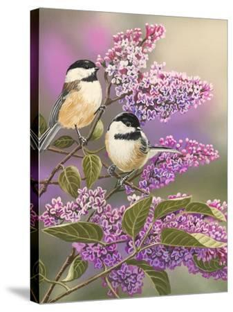 Lilacs and Chickadees-William Vanderdasson-Stretched Canvas Print