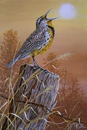 Meadowlark Painting-Jeff Tift-Giclee Print