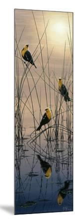 Morning Call - Yellow Headed Blackbirds-Jeff Tift-Mounted Giclee Print