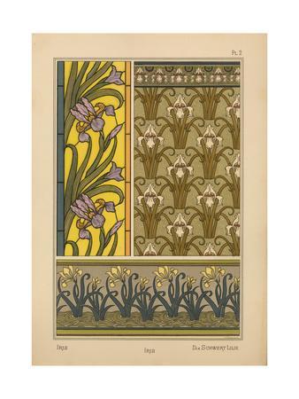 Iris--Framed Giclee Print