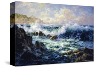 Morning Surf-Nicky Boehme-Stretched Canvas Print