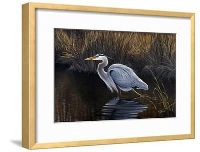 Making Strides - Great Blue Heron-Wilhelm Goebel-Framed Giclee Print