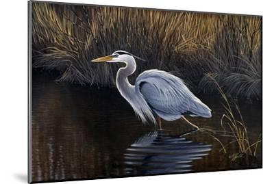 Making Strides - Great Blue Heron-Wilhelm Goebel-Mounted Giclee Print