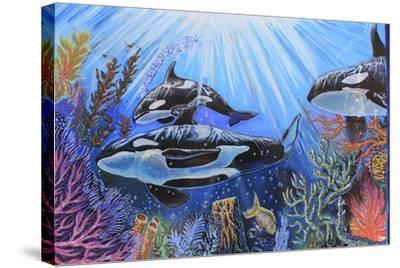 Killer Whales-Martin Nasim-Stretched Canvas Print