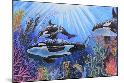 Killer Whales-Martin Nasim-Mounted Giclee Print