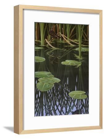 Reflections of Courtship-Wilhelm Goebel-Framed Giclee Print