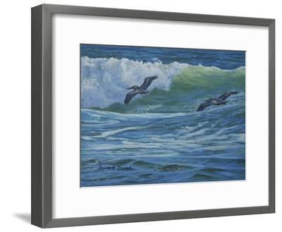 Pelican Skimmers-Bruce Dumas-Framed Giclee Print