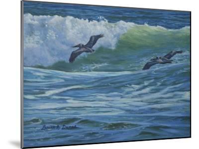 Pelican Skimmers-Bruce Dumas-Mounted Giclee Print